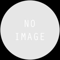 GSDX TF0133A