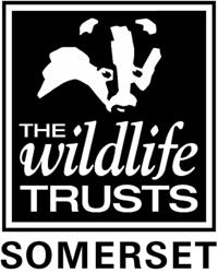 somerset-wildlife-trust-logo.png